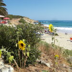 Algarve Villa Beach View Lagos Ingrina Beach